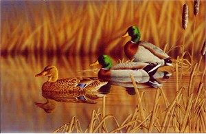 "Richard Clifton Limited Edition Print:""Afternoon Mallards"""