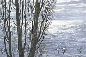 "Robert Bateman Hand Signed And Numbered Limited Edition Print:""Poplar Tree and Buffleheads """
